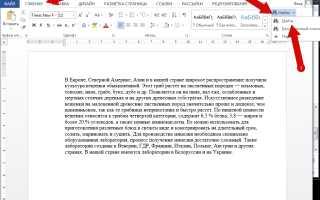 Как найти слово или фразу в документе Microsoft Word 2013