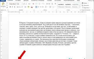 Как в Microsoft Word 2013 посмотреть статистику