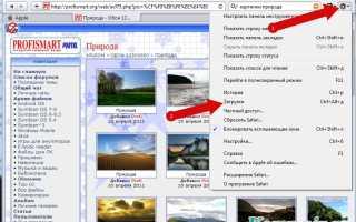 Как просмотреть список загрузок в браузере Safari